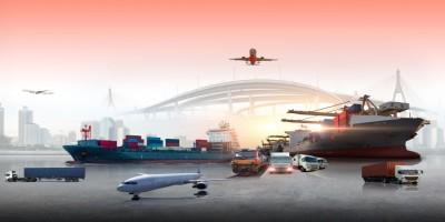 Transport – rodzaje, struktura i działanie